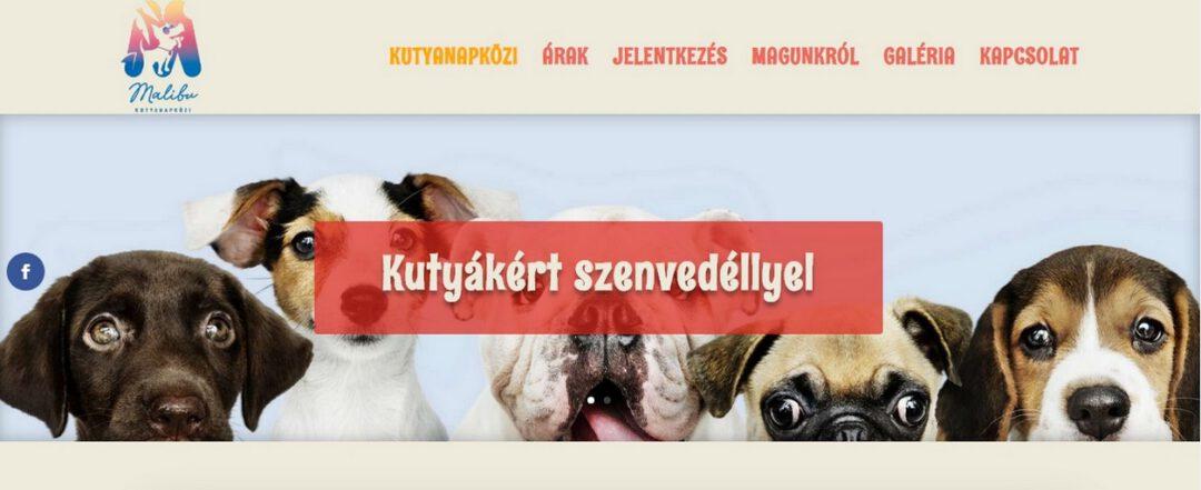 kutyanapkozi-weblap-referencia